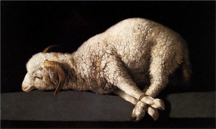 Agnus Dei (Lamb of God) - Francisco de Zurbaran